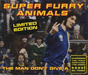 Super Furry Animals cover
